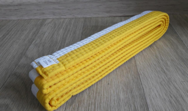 Аттестация на бело-жёлтый и жёлтый пояс